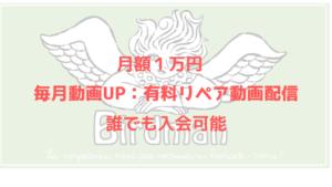 月額1万円リペア動画配信サービス
